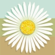 Graphic of white daisy on tri-color (blue, green, brown) square.